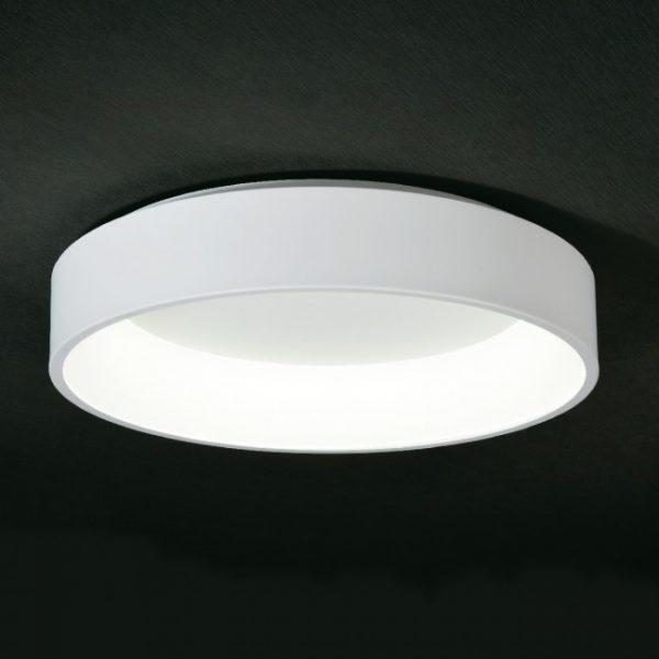 aurora exclusive light